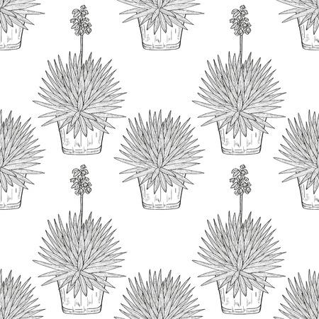 Yucca.Flowering plant. A flower pot. Sketch. Wallpaper, texture, seamless. Monochrome