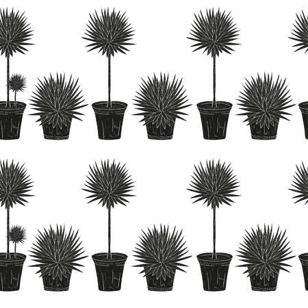 Yucca. A plant, a bush. Black silhouette on white background. Wallpaper, texture, seamless.