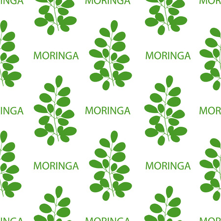 Moringa. Branch, text. Background, wallpaper, texture, seamless. Green silhouette on white background. Illustration