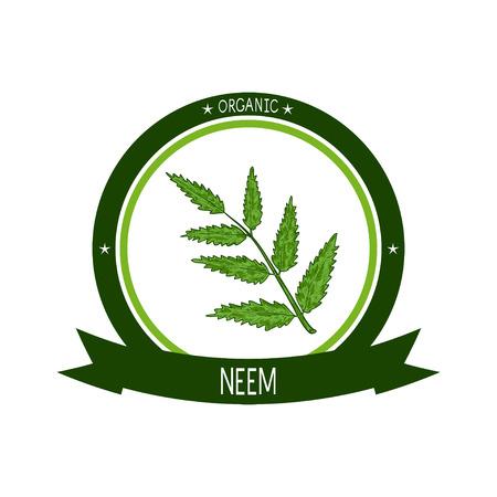 Neem. Plant. Branch, leaves. Sticker, emblem, sign. Sketch. On a white background. Illustration