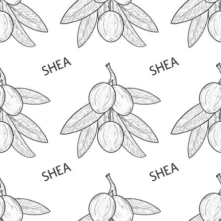 Shea. Branch, leaves, fruit. Sketch. Wallpaper, seamless, texture. Monochrome.