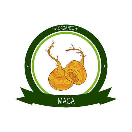Maca. Sketch. Logo, emblem, sticker Illustration