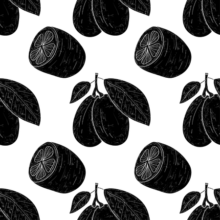 Kumquat. Fruit, leaves, branch.  Wallpaper, seamless, texture. Black silhouette on white background Ilustração