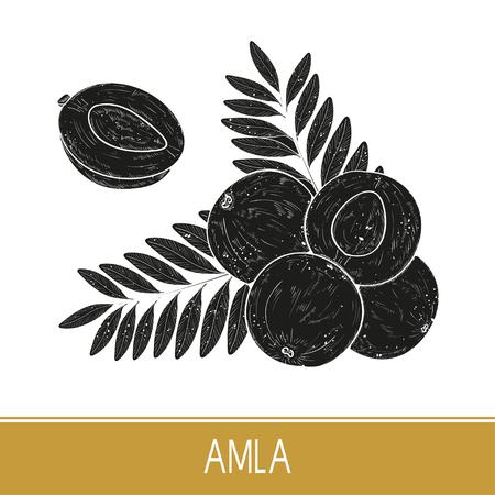 Amla. Obst, Blatt. Einfarbig. Schwarze Silhouette auf weißem Hintergrund.