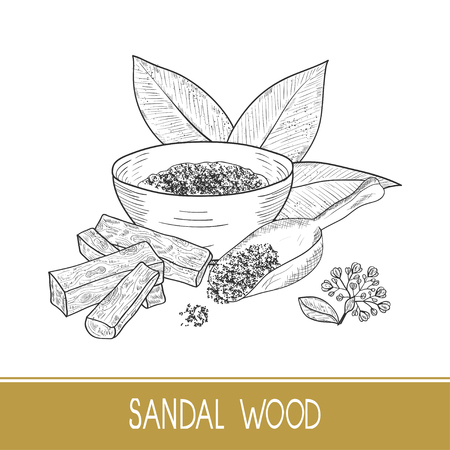 Sandal wood. Leaf, flower. Powder, bacillus, bowl, spoon. Monochrome. Sketch. On a white background.