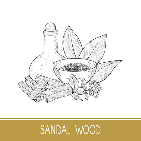 Sandal wood. Leaf, flower. Powder, bacillus, bowl, oil. Monochrome. Sketch. On a white background.