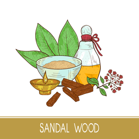 Sandal wood. Leaf, flower. Powder, bacillus, bowl, oil, bark. Color. Sketch. On a white background.