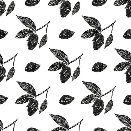 Jojoba. Branch, leaves, fruit. Background, wallpaper, seamless.  Black silhouette on white background.