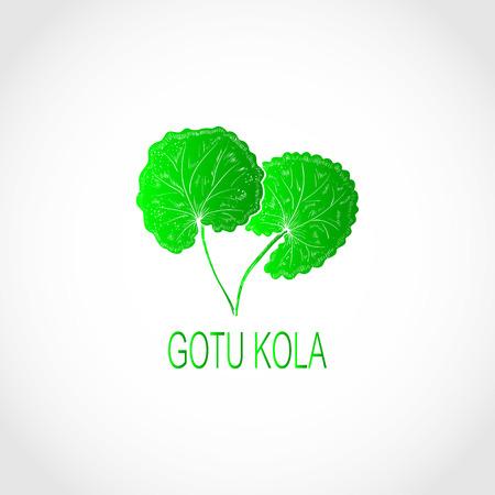 Gotu kola. leaf. Logo, embleml. Green silhouette Illustration