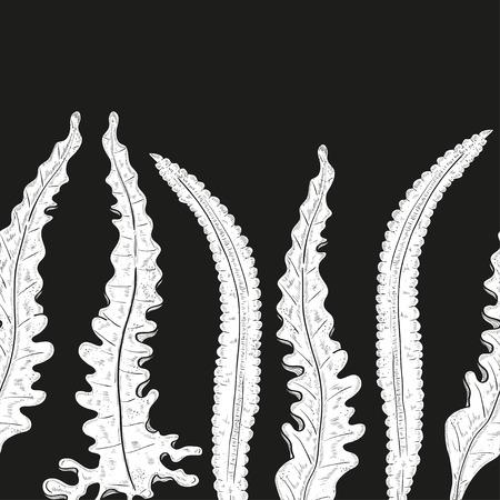 Laminaria. Seaweed. Wallpaper, texture, seamless. White silhouette on black background