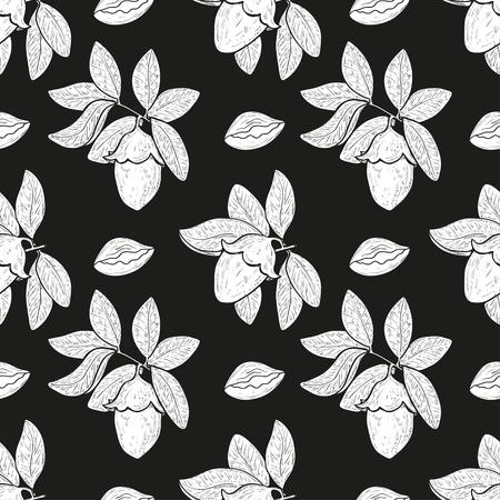 Jojoba. Plant. Branch, leaves, fruit. Background, wallpaper, seamless. White silhouette on black background.