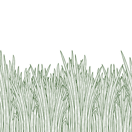 Vetiver. Plant. Leaves, root. Background, wallpaper, seamless. Sketch. Monophonic. Vector Illustration