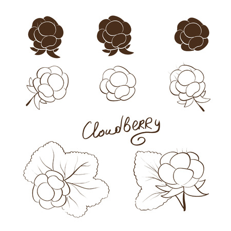Cloudberry. Set. Solid drawing silhouette. Sketch
