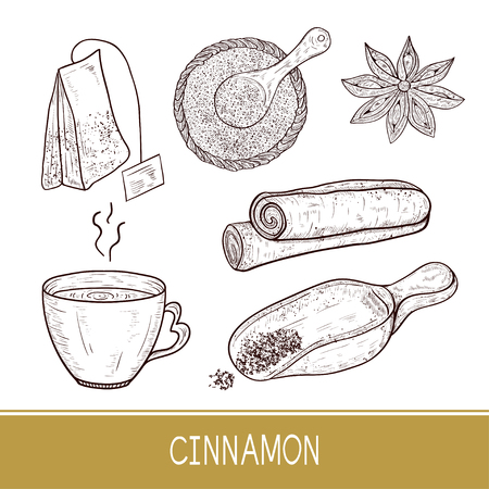 Cinnamon sticks, scoop, star anise, tea, tea bag. Sketch. Set. Monophonic. Ilustração