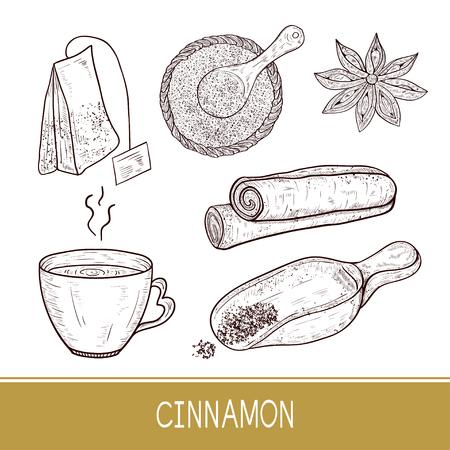 Cinnamon sticks, scoop, star anise, tea, tea bag. Sketch. Set. Monophonic. Illustration