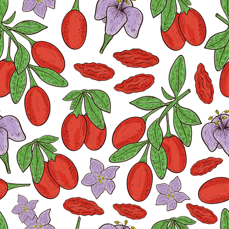 Goji. Branch, berry, leaf, flower. Set. Sketch. Background, wallpaper, seamless, texture. Color Illustration