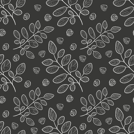 Moringa. A plant, a seed. Background, wallpaper, seamless. Sketch. White drawing on a dark background.