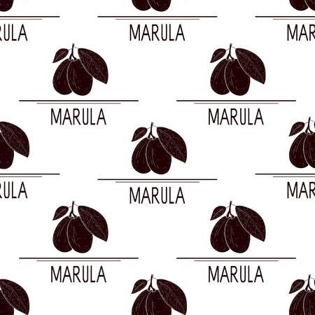 Marula. Fruit. Silhouette. Background, wallpaper, seamless, texture. Ilustrace