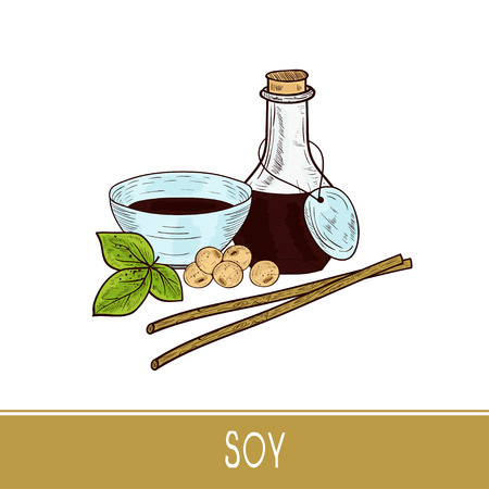 Soy sauce, leaf, soya beans. Bottle, bowl, stick. Set. Sketch.