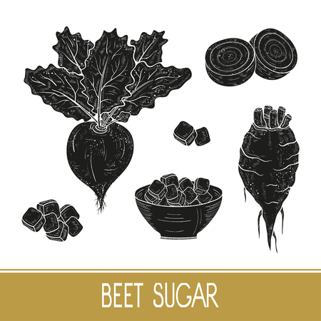 Sugar beet. Root, leaves, sugar, bowl. Set. Black silhouette on white background.