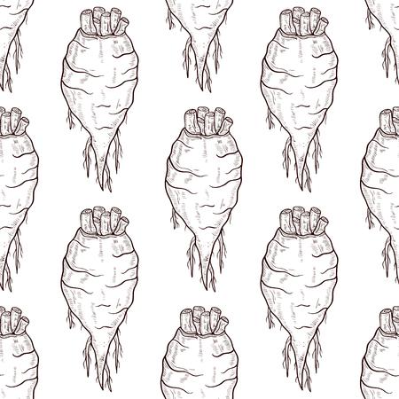 Sugar beet. Root. Sketch. background, wallpaper, texture, seamless.