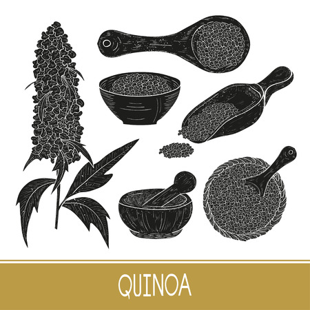 Quinoa. Plant. Seeds in a bowl, scoop, mortar. Set. Black silhouette on white background. Ilustracja