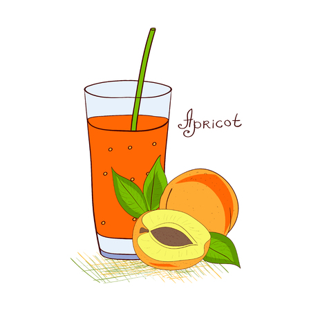 Apricot. Juice. In glass. Sketch, Doodle.