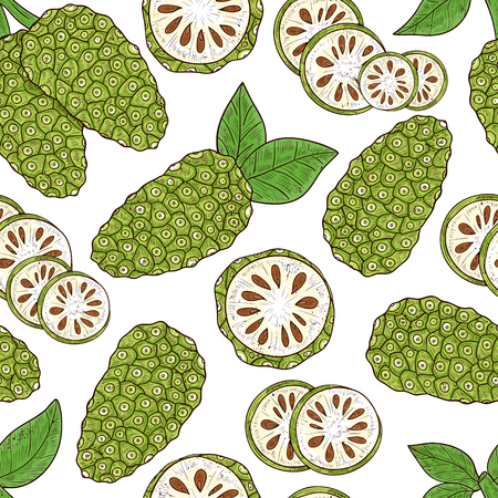 Noni. Fruit, leaves. Sketch. Texture, wallpaper, seamless, background. Color Illustration