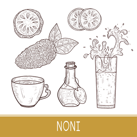 Noni. Fruit, leaves. Sketch. Glass, cup, bottle of drink. Set. Monophonic.