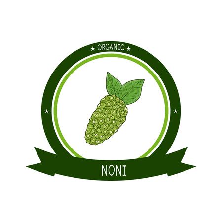 Noni. Fruta, hojas. Logotipo, emblema, símbolo. Bosquejo. Color.
