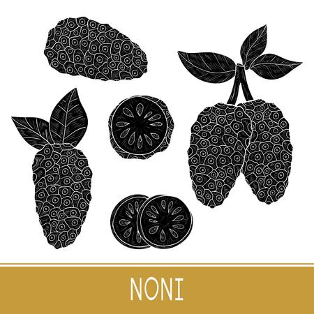 Noni. Fruit. fruit, leaves. Set. Black silhouette.
