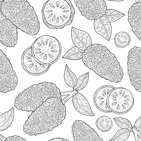 Noni. Fruit, leaves. Sketch. Texture, wallpaper, seamless, background. Monophonic. Illustration