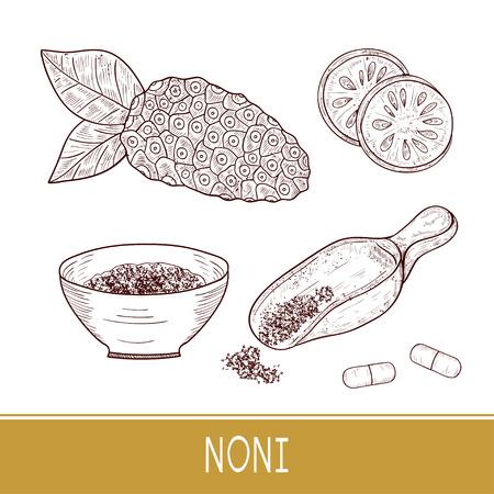 Noni. Fruit, leaves, powder, spoon, bowl, pill. Sketch. Set. Monophonic. Illustration