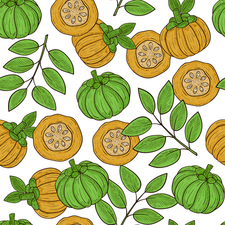 Garcinia. Fetus, leaves. Sketch. Template. Background, wallpaper, seamless, texture. Color