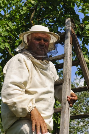 preferences: Bee keeper with a swarm of honeybees Stock Photo