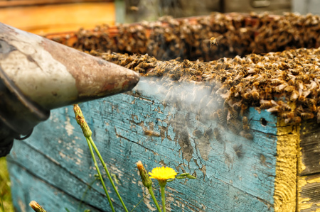 smoker: Smoker beekeepers tool to keep bees away from hive, Apiculture Stock Photo