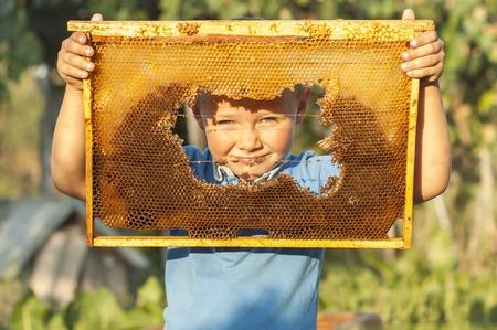 Smiling boy holding frame of honeycomb. beekeeping Banco de Imagens