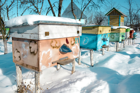 Beehives in apiary covered with snow in wintertime.