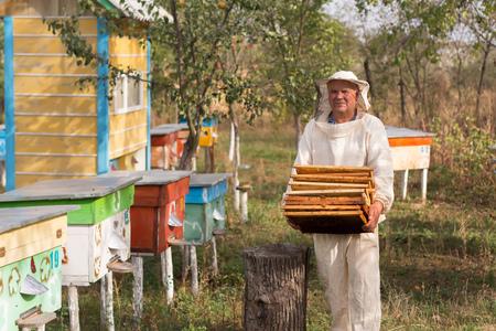 Imker arbeitet mit Bienen und Bienenstöcke auf der Imkerei. Imkerei.