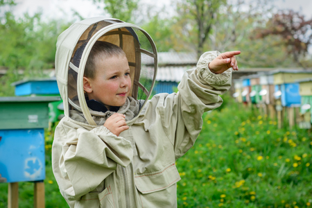 apis: The boy in protective clothing beekeeper works on an apiary. Apiculture.