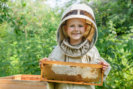 The boy beekeeper holds in his hands a honeycomb with fresh honey. Apiculture. Fresh honey.