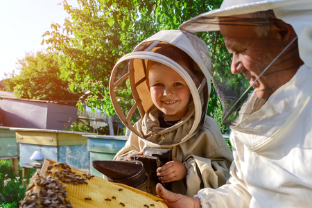 An experienced beekeeper transfers knowledge of beekeeping to a small beekeeper. The concept of transfer of experience. Stock Photo - 88598955