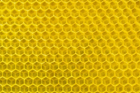 Background texture and pattern of a section of wax honeycomb. Apiculture.