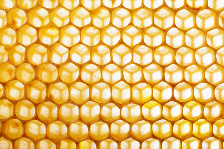 Honeycomb macro as a background. Beekeeping products. Apitherapy. Reklamní fotografie - 97595325