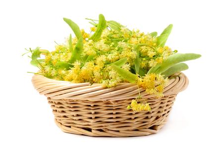 Fiori di tiglio in un cesto su uno sfondo bianco. Tè ai fiori di tiglio.