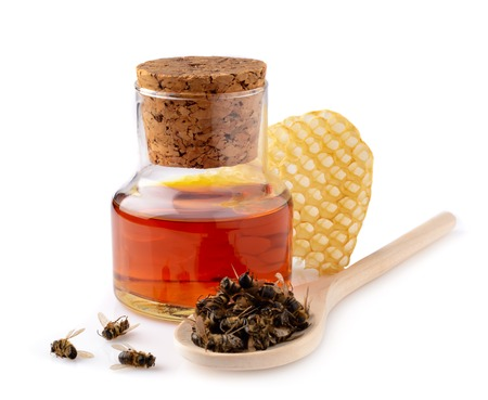 A bottle of tinctures on dead bees and dead bees in a wooden spoon. Treatment with dead bees. Dead bees do not buzz but heal
