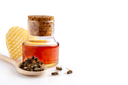 A bottle of tinctures on dead bees and dead bees in a wooden spoon. Treatment with dead bees. Dead bees do not buzz but heal. Apitherapy