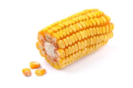 Corn On White Background. Maize On White.