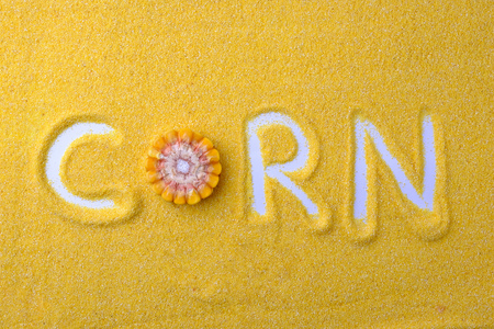 Corn grits Concept Inscription corn flour yellow