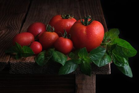 Red ripe tomatoes with drops of water and leaves of fresh basil on a wooden table. Organic food. Rural style.